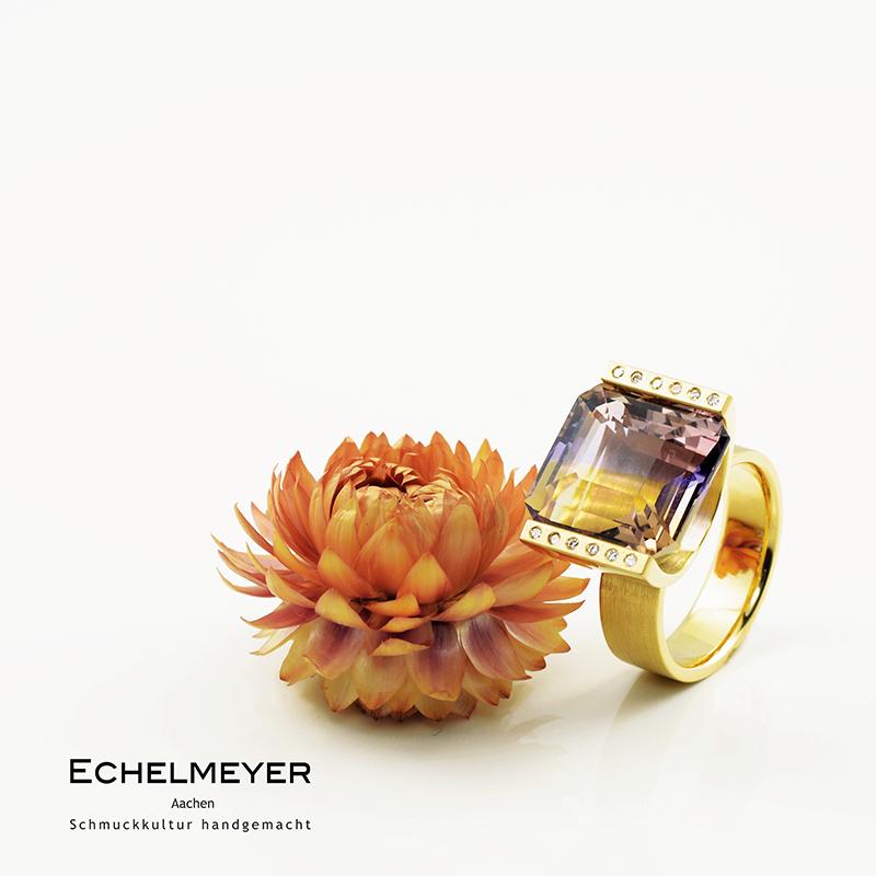 Echelmeyer_6