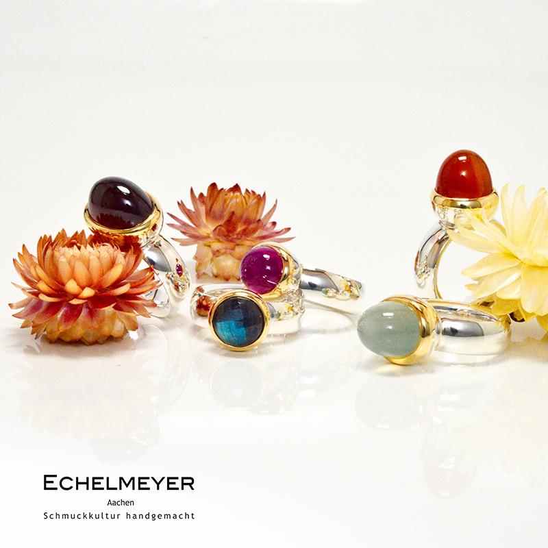 Echelmeyer_2
